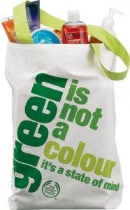 GreenBag-with-Product-copy-186x300-1