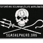 Tony Inman supports Sea Shepherd