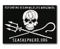 Community applies to sea creatures as well as land-based ones. Tony Inman supports Sea Shepherd